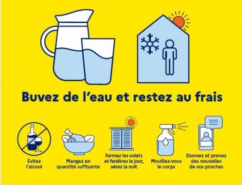 Attention…CANICULE !